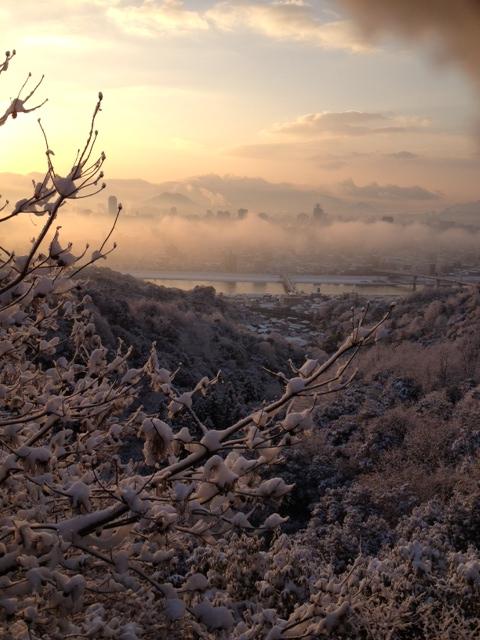 朝焼けに輝く雪景色
